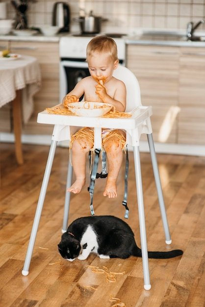 Cat eating pasta from the floor thrown by baby boy Free Photo