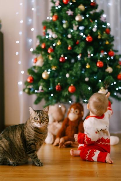 Кошка сидит перед елкой, пока ребенок тянется за елочным орнаментом. фото высокого качества Premium Фотографии