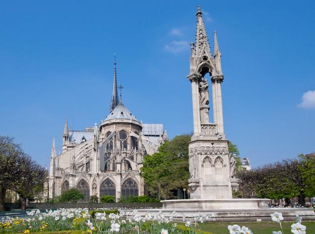 Cathedral notre dame Premium Photo