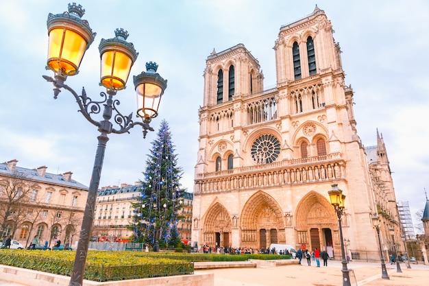 Собор парижской богоматери на рождество Premium Фотографии