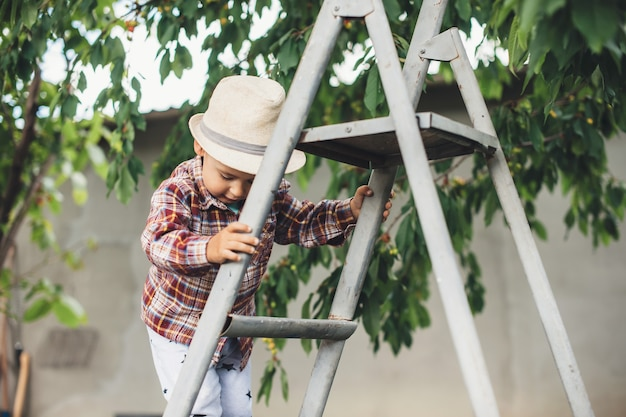 Caucasian boy with hat using stairs to eat cherry in the garden near the tree Premium Photo