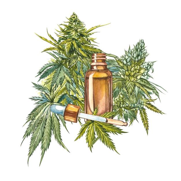 Cbd oil hemp products. watercolor illustration on white Premium Photo
