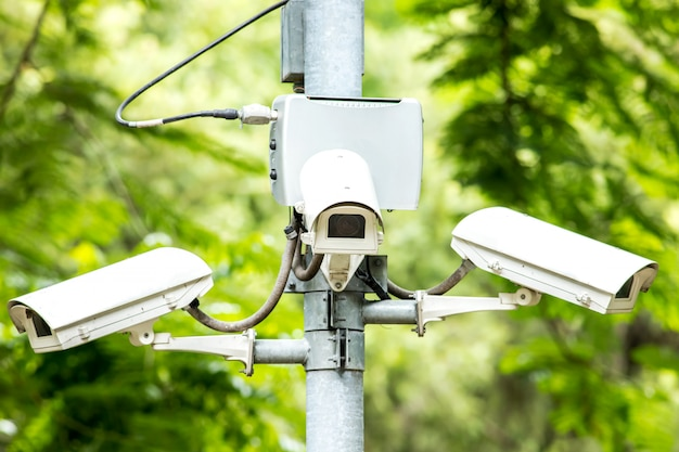 ツリー上の公園でセキュリティcctv 3カメラ Premium写真