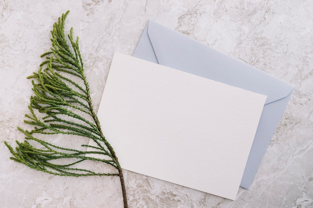 Cedar twig with two white and blue envelope on marble backdrop Free Photo