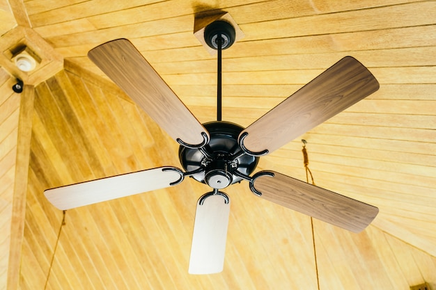 Ceiling fan decoration interior of room Free Photo