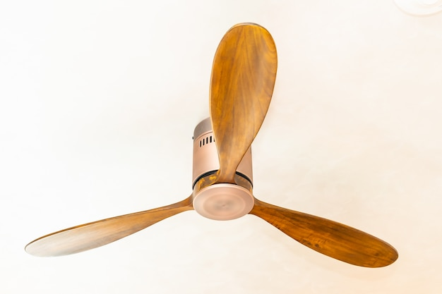 Ceiling fan on the top of room decoration Free Photo