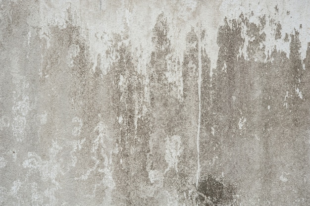 Cement wall with a white spot Free Photo