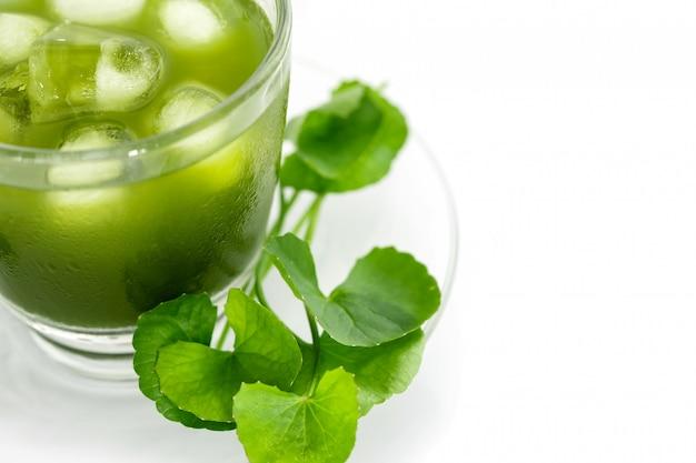 新鮮な緑のゴツコラ、centella asiaticaの葉と白のジュース、アジアのペニーワー、インドのペニーワー、アーユルヴェーダの薬草 Premium写真