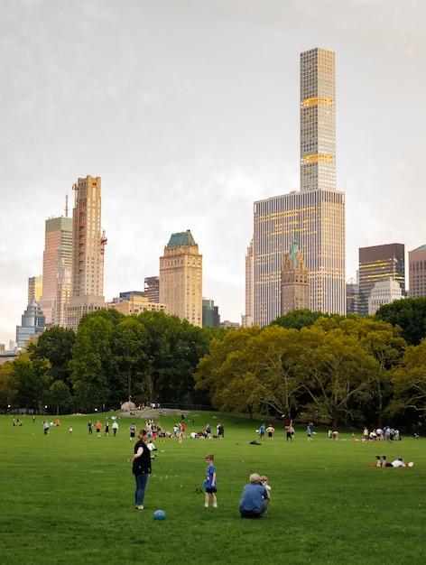 Central park of new york city Premium Photo