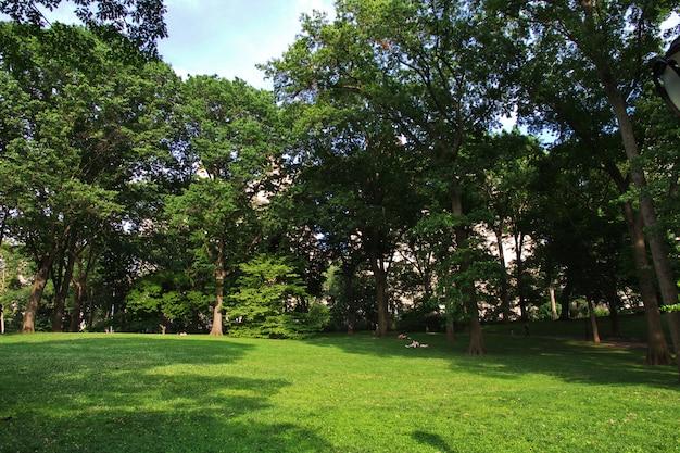 Central park in new york Premium Photo