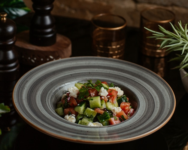 A ceramic plate of square cut vegetables and herbs salad Free Photo