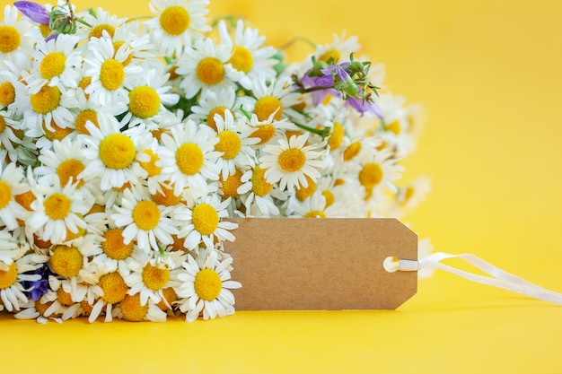 Chamomile flowers with empty tag on yellow Premium Photo