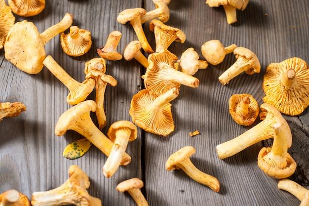 Chanterelle mushrooms Premium Photo