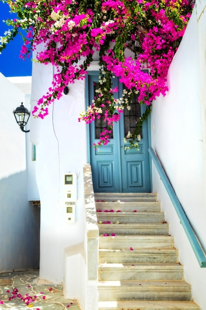 日当たりの良いミコノス島の魅力的な花の通り。キクラデス諸島、ギリシャ Premium写真