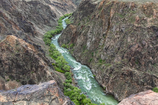 Charyn river canyon in spring Premium Photo