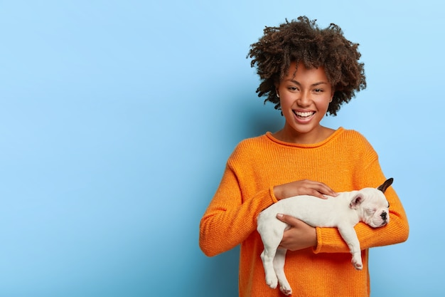 陽気なアフロの女性は彼女の好きな犬をかわいがり、家畜が好きで、小さな血統のブルドッグを持って、オレンジ色のジャンパーを着て、友達に動物を与えたいと思っています 無料写真