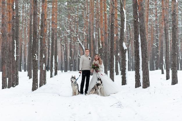 Веселые жених и невеста с двумя сибирских хаски ставят на фоне снежного леса. Premium Фотографии