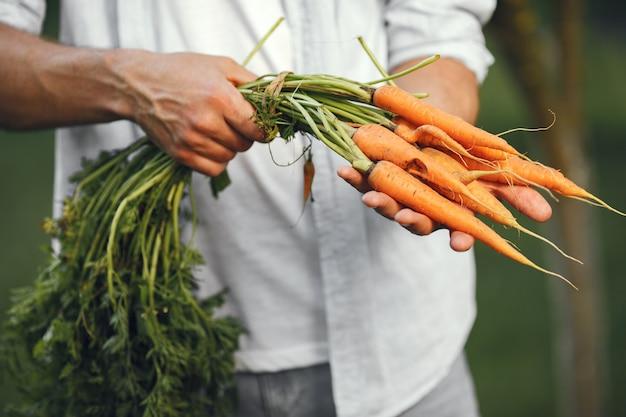 Веселый фермер с органическими овощами в саду. органическая морковь в руках человека. Бесплатные Фотографии
