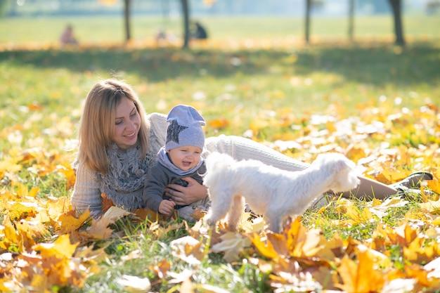 陽気な母親と子犬と遊ぶ秋の公園でかわいい赤ちゃん。 Premium写真