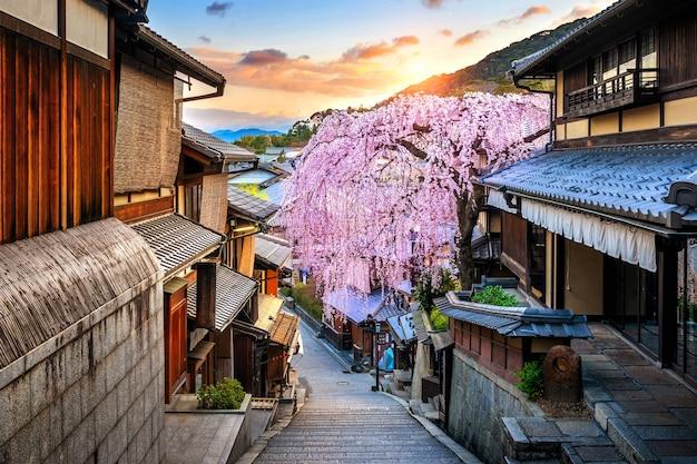 일본 교토의 역사적인 히가시야마 지구에서 봄의 벚꽃. 무료 사진