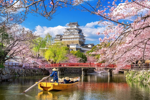 日本の姫路の桜と城。 無料写真