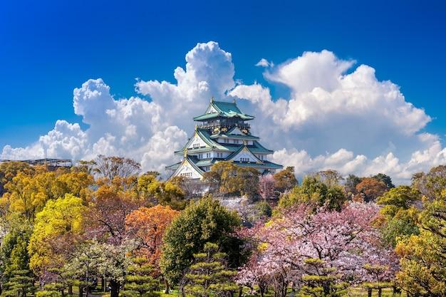 Вишневый цвет и замок в осаке, япония. Бесплатные Фотографии