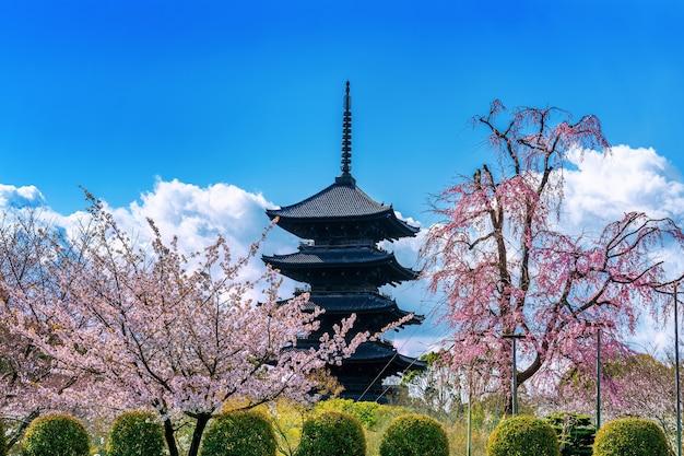 Fiori di ciliegio e pagoda in primavera, kyoto in giappone. Foto Gratuite