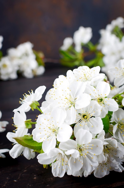 Cherry flowers on dark woodenon Premium Photo