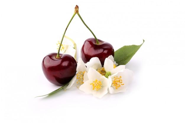 Cherry and jasmine isolated on white background Premium Photo