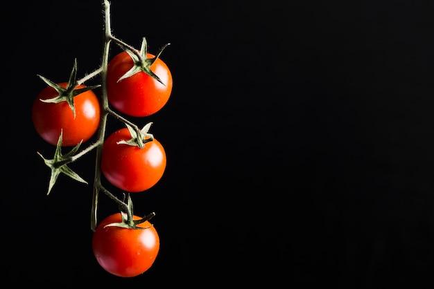 Cherry tomatoes on dark background Free Photo
