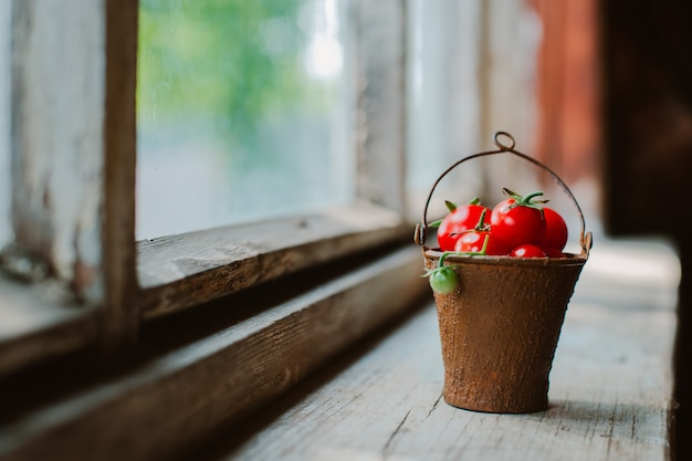 Cherry tomatoes in a decorative rusty old bucket on a dark rustic. Premium Photo