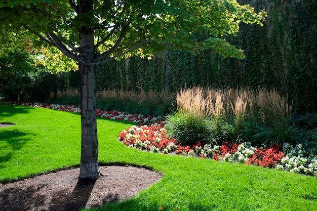 Chicago park Premium Photo