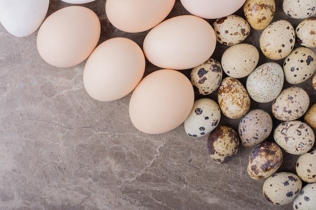 땅에 닭고기와 메추라기 알 무료 사진