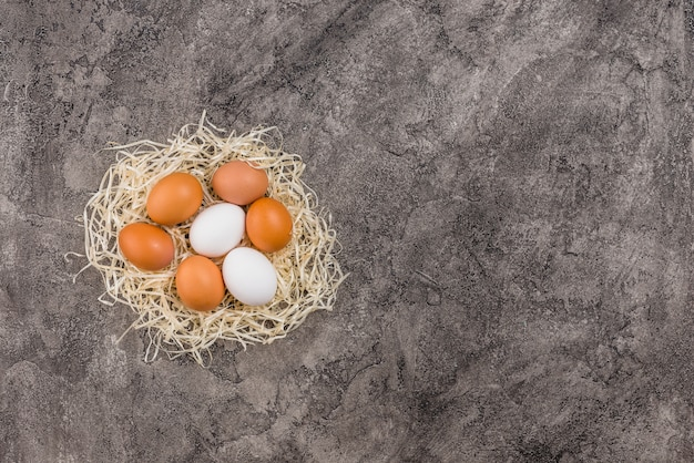 Chicken eggs in nest on grey table Free Photo