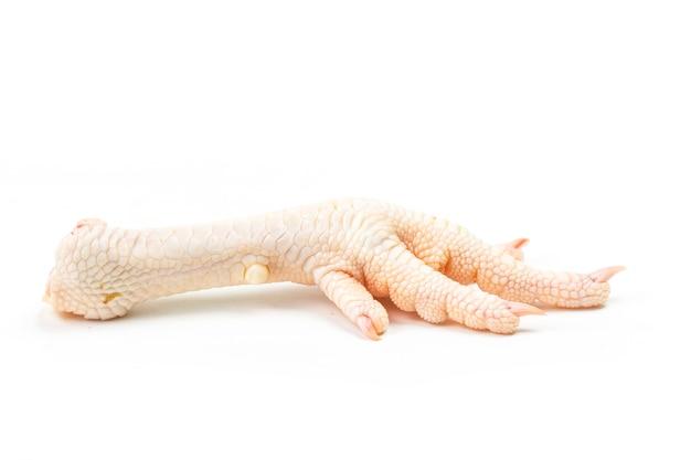 흰색 바탕에 닭 발 프리미엄 사진