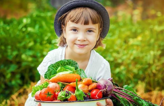 Ребенок и овощи на ферме. выборочный фокус. Premium Фотографии