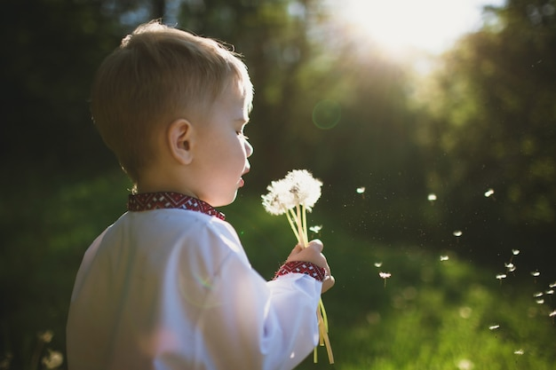 Child blowing a dandelion Premium Photo