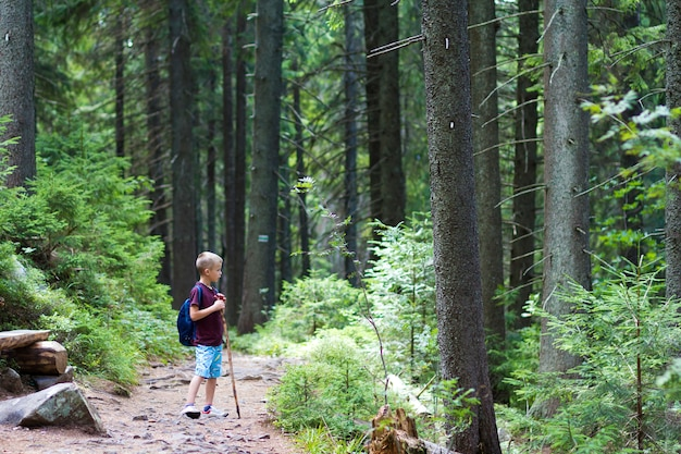 Child boy with hiker backpack and stick standing alone in pine forest. Premium Photo