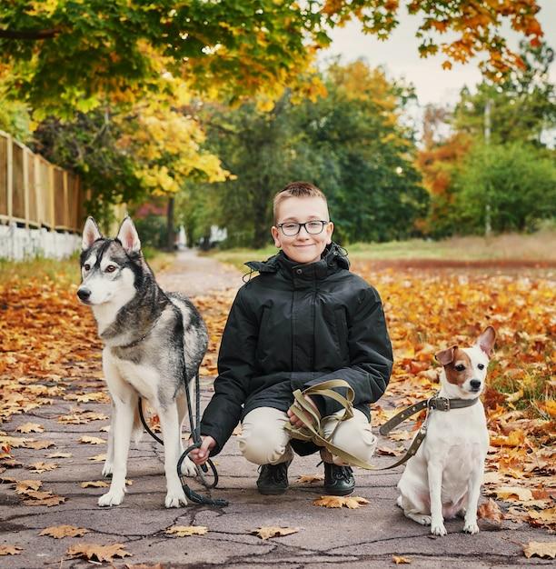 ハスキー犬とジャックラッセルテリアの子少年は秋に公園を散歩します Premium写真