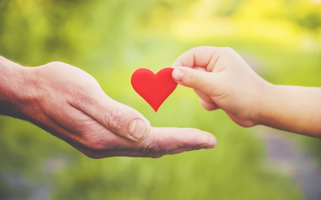 Child and father have a heart in their hands. selective focus. Premium Photo