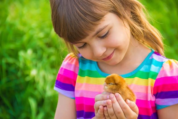 Child girl with chicken in hand Premium Photo