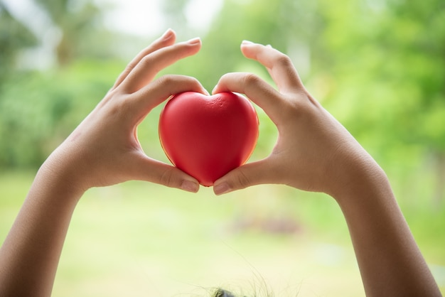 Child holding red rubber heart Free Photo