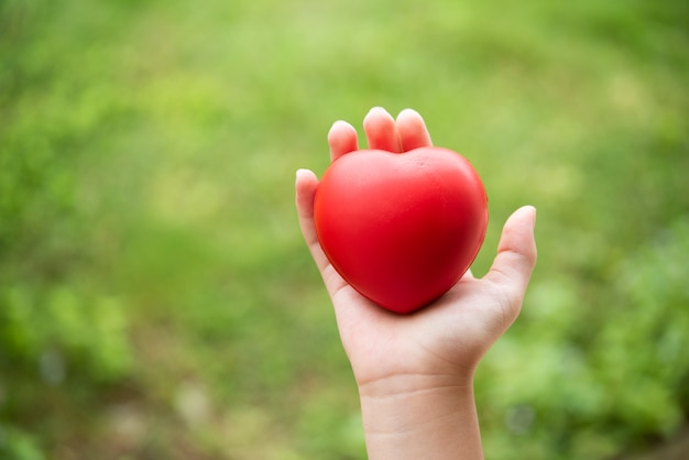 Child holding a red rubber heart Free Photo