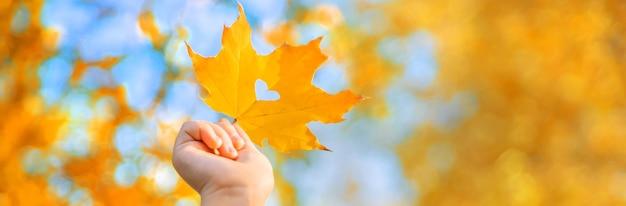 秋の公園で子供を残します。 Premium写真
