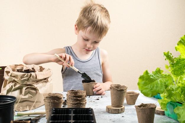 Ребенок сажает семена в торфяные горшки Premium Фотографии
