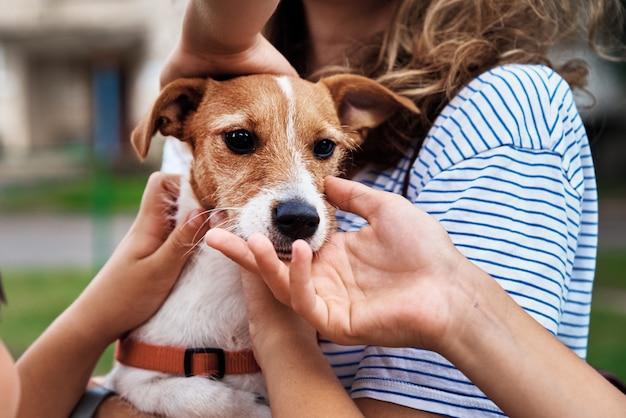 子供たちは屋外で愛撫犬を手渡します Premium写真