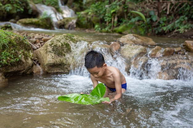 Children play happily in the stream Free Photo