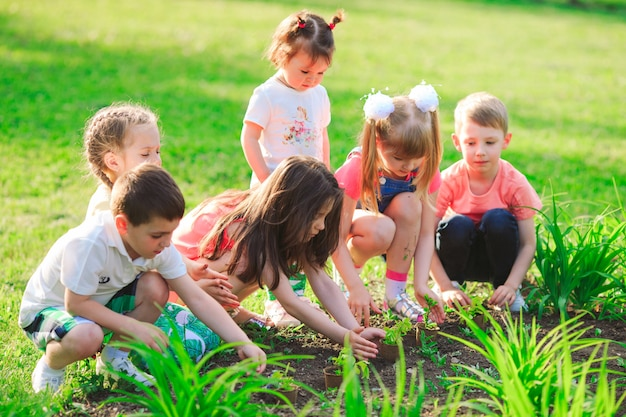 Children's hands planting young tree on black soil together as the world's concept of rescue Premium