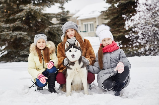 Children sit in the snow and stroked dog husky. children go out and play with husky dog in winter. walk in the park in winter, joy and fun, dog husky with blue eyes. ,  dec Premium Photo