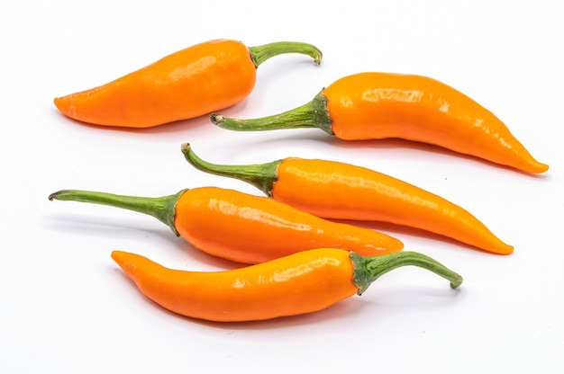 Chili pepper isolated on a white background. close up orange chili on white. Premium Photo